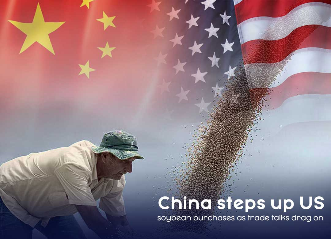 China agreed to buy more US Soybean to reach on trade agreement