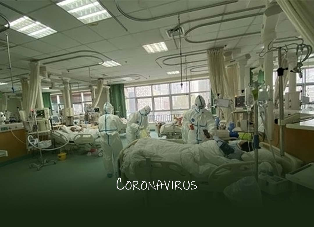 Coronavirus death toll rises to 259, total cases rise to 11,791