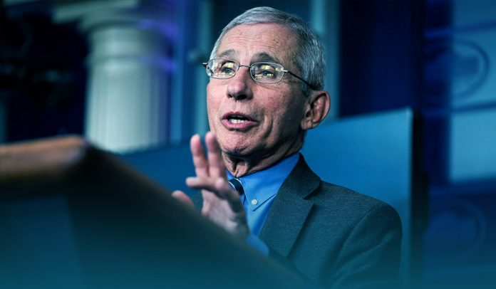 States face serious consequences if they restart economy quickly – Fauci