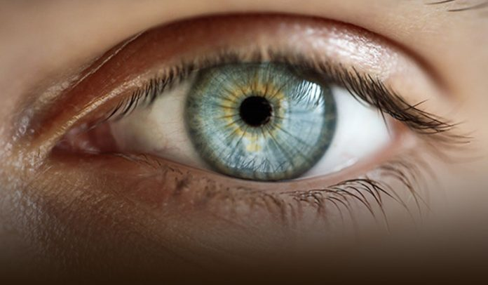 Important facts to Know About Macular Degeneration